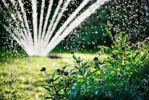 Slim water geven en watermanagement in de tuin